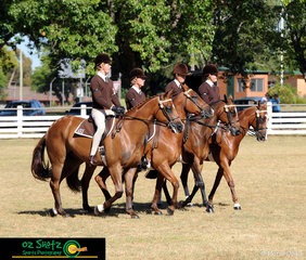Winning their class and taking home the highest points for overall Team of Four Seniors group, Luke Kiehen riding Cool, Shannon Williamson riding Hiccup, Sam Donnelly riding Wide Awake and Emily Mills riding Top Gun from Glen Innes at the 2019 Kingstown Jamboree.