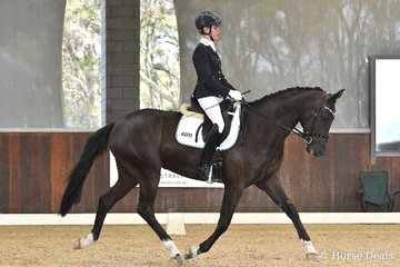 Allison O'Neill rode the NSW bred, 'Neversfelde De la Renta' to earn an impressive 80.60% in round one of the Four Year Old Young Dressage Horse class.