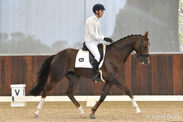 Jackson Stern is pictured aboard, 'Redwood Burlesque' during round one of the Four Year Old Young Dressage Horse class.
