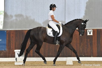 Karen Blythe rode 'Sonic K' to win round one of the 4 year old Young Horse.