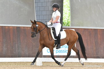 Clair Arnold riding 'Roseglen Stolen Dance' took fifth place in the 4yo Young Pony Round One.