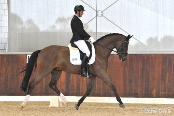 David Boyle rode 'Bachelor' in the 5yo Young Horse Round One.