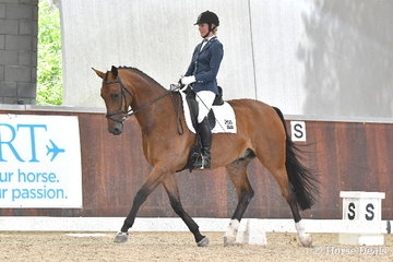 Rhianon Pettigrove riding 'AEA Tuscany' took sixth place in the 6 yo Young Horse Round One.