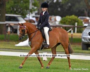 """Harrington Park Design"" was in the Top Ten in the Child's Large Pony, ridden by Zara Missen and exhibited by Kristie Missen"