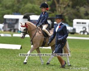 "Champion Open Leading Rein Pony, ""Picturesque Prince"" ridden by Madison Borthwick, exhibited by Erin Bowers."