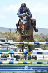 Looking for a left hand turn in the jump off of the Flexible Fit Future Stars, Andrew Lamb had to settle for eighth place riding his home bred, 'Denison Park Spartava'.
