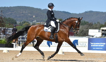 Rozzie Ryan had a great day in the competition arena today and is pictured aboard the Plenty family's imported KWPN mare by Rubiquil, 'Adonie' that won the IRT FEI Grand Prix CDI***.