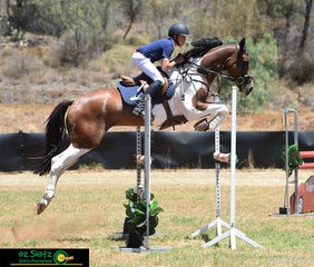 Forming a great partnership, Jayden Donald guides SS Regal around the 1.10m Super Two Phase track at the Toowoomba Australia Day Show Jumping Championships.