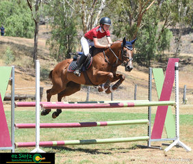 Jumping their way to first place in the 1.10m Super Two Phase was Paige Johnston and Windmill Park Kool As at the Australia Day Show Jumping Weekend.