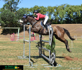 Libertarian makes easy work over the 1.20m oxer in the Super Two Phase with Emily Patterson in the saddle at the Australia Day Show Jumpiing Championships.