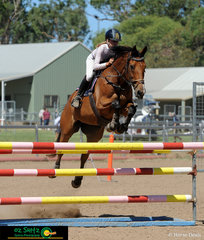 Winning the 1.15m Championship on Sunday was Grace Muirhead and In Cahoots at the Australia Day Show Jumping Championships.