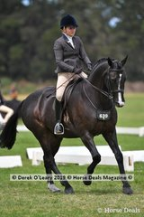"""""""Rotsdom"""" ridden and exhibited by Georgia Greenwell in the Show Hunter Small hack, placed in the Top Ten"""