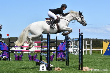 Jess Kent rode the Ally Lamb produced, 'Denison Park Cassisi' to take fourth place in the Horseware Australia CSI*  jumping class.