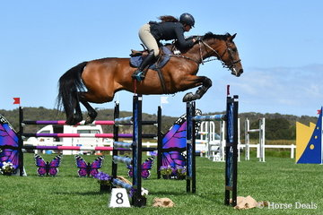 The ever competitive, Melissa Froesch is pictured aboard her home bred, 'Glenara Lady Bollinger' on their way to ninth place in the Horseware Australia CSI*  jumping class.