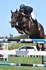 Brook Dobbin jumped clear and four riding, 'Equador MVNZ' to take fourth place in the Robertson-Smith Partners Equine Vets World Cup Qualifier.