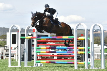 Victorian rider, Tesse Cook is pictured jumping a lovely fence aboard her, 'Hetherton Park Alfonz' during the Robertson-Smith Partners Equine Vets World Cup Qualifier.