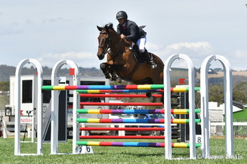 Well known South Australian jumping rider, Kristy Bruhn rode her Irish Sporthorse, 'Jack' to post one of just five first round clears in the Robertson-Smith Partners Equine Vets World Cup Qualifier.