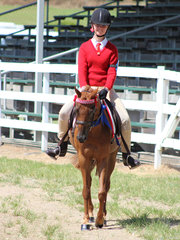 Lucy Philip from Zone 15 winner of the under 13hh pony club mount