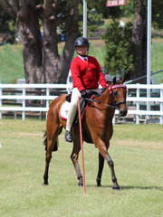 Safron Anderson from Zone 15 in the Pony Club Mount