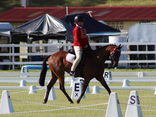 Safron Anderson respresenting zone 15 at the State Dressage Championships