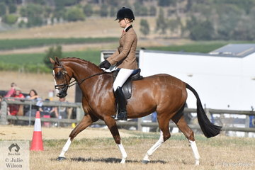 The well travelled, Brynie Lee rode, 'Mirinda Show Stopper' to win the Ring 2 classes for Novice Show Hunter Galloway and Lightweight Show Hunter Galloway.