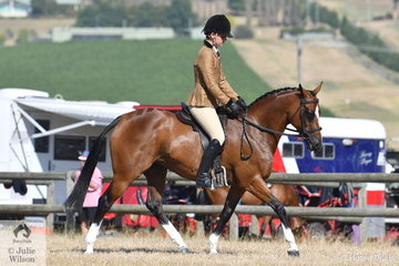 Riley Shannon-Winzer rode the off the track Thoroughbred, 'Keltara Park Gold Devine' to win the Ring 2 class for First Season/Newcomer Show Hunter Galloway.