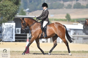 Tiffany Greenhill rode her well performed. 'Tiffin's Encore' to take fourth place in the Ring 2 class for Show Hunter Galloway 14.2-15hh.