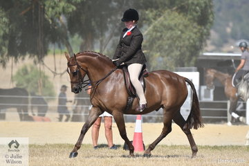 Claudia McMahon rode the well performed, 'Salisbury Masterpiece' to take second place in the Ring 2 class for Show Hunter Galloway 14.2-15hh and claim the Show Hunter Galloway Reserve Championship.