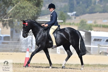 Harrison Postill rode, 'Batavia' to take second place in the Ring 2 class for Hack 15-15.2hh.