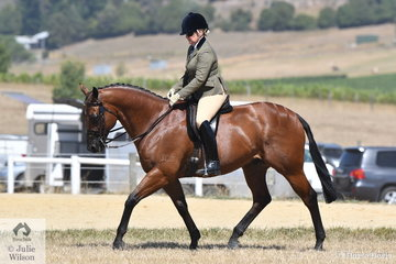Karen Fisher rode, 'Safari' to win the Ring 2 class for Show Hunter 15-16hh and take out the Reserve  Champion Show Hunter Hack award.