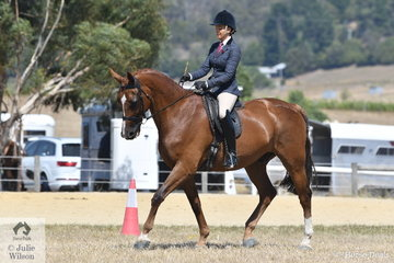 Lauren Peters rode, 'Istvan Romero' to take second place in the Ring 2 class for Show Hunter Hack Over 16hh.