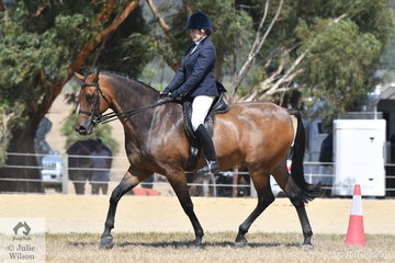 Lynda Peters riding her, 'Warrawee Intrigue' to win the Ring 2 class for Show Hunter Over 16hh and went on to claim the Show Hunter Hack Championship.