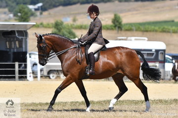 Colleen Waddell rode her well performed, 'Ellie O Kalos' to win the Ring 2 class for Heavyweight Show Hunter Hack.