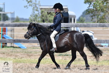 Tyler Gamble rode, 'Anton' to win the class for Child's Pony.