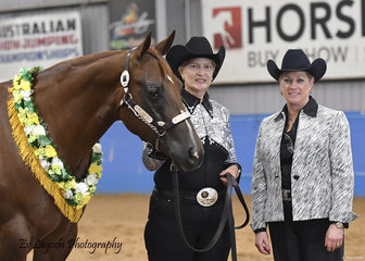 CHAMPION AmQHA MARE, BM INTENTIONAL WITH HELEN BARNES AND JUDGE LYNDA DANIELSON FROM ILLINOIS USA