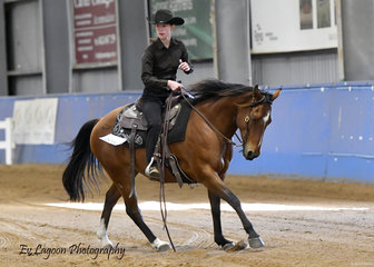 LETHALS LITTLE SPIN RIDDEN BY AMY GLEAR RESERVE STATE CHAMPION IN THE YOUTH RANCH RIDING 7-18 YEARS