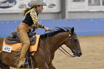PJ BLAZING GLORY RIDDEN BY CHERYL CARTER-PINTOY PLACED 4TH IN THE SENIOR HORSE REINING