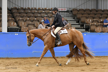 PATRICIA SHUGG PLACED 4TH IN THE SELECT AMATEUR HUNTER UNDER SADDLE RIDING SVQ GOOD ASSET