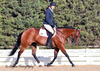 YVETTE WEALANDS COMPETING IN THE ALL AGE DRESSAGE RIDING MPQ CLASSIC EYE CANDY