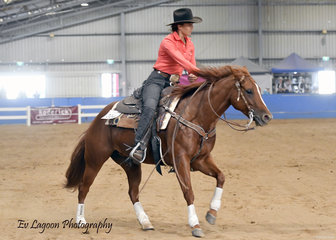 SASHA'S SMOKIN LEAN COMPETING IN THE SENIOR HORSE REINING RIDDEN BY JESSICA YOUNG