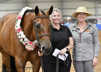 IRONOUTATEN, WINNER OF THE $500 OPEN HUNTER IN HAND STAKES, WITH KARLI RODERICK AND LIANE HENSELL