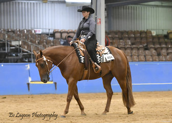 JANET MANSLEY RIDING DESIGNED BY THE PROPHET IN THE NOVICE AMATEUR WESTERN HORSEMANSHIP