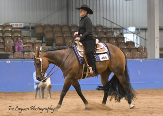 TRACY ATKINS RIDING CEEIN RADICAL IN THE NOVICE AMATEUR WESTERN HORSEMANSHIP