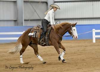 WHIZZELING GUNS RIDDEN BY TYLER SMITH IN THE JUNIOR HORSE REINING