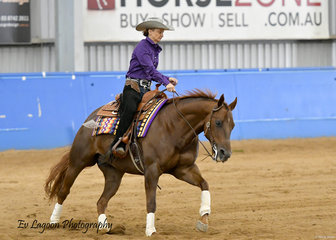 WHIZZLE WITH ME RIDDEN BY ALISON DIMERY IN THE AMATEUR REINING