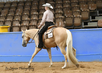 TOO GOOD TO BE BLUE RIDDEN BY GILL TANGEY IN THE JUNIOR HORSE WESTERN PLEASURE