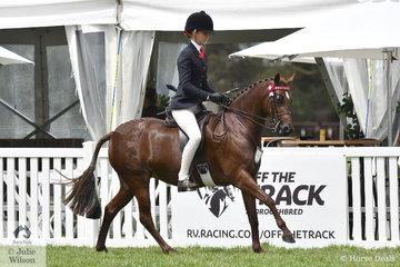 A busy Ebonie Lee rode Cassandra Fasan-Jones', 'Kyandra Picturesque' to claim the Child's Medium Pony Reserve Championship.
