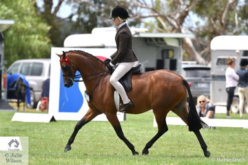 Daizi Plumb rode Emma Richardson's, 'Nalinga Piano Man' to make Top 10 in the 2019 Child's medium Pony Championship on day one of the 50th Celebration Barastoc Victorian Horse of the Year Show.