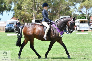 Alexandra McCormack rode her, 'Dior' to claim the Child's large Hack Reserve Championship on day one of the 50th Celebration Barastoc Victorian Horse of the Year Show.