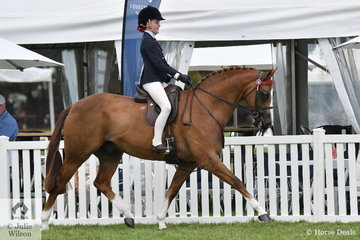 Arielle Stella rook sixth place in the Peter Gahan Trophy riding class sponsored by Julie Wilson Photography on day one of the 50th Celebration Barastoc Victorian Horse of the Year Show.